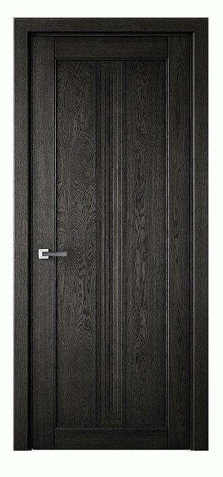 Vuldi Tivoli Z-121 Interior Door Black Oak image from VULDI COMPANY
